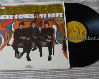 TREMELOES ORIG PSYCH LP RECORD EPIC HERE COMES MY BABY
