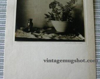 SALE:  50 FOR  3 vintage signed Ericka Parsons Still Life Photos FOR   Original Art Deco