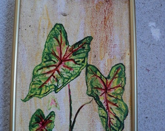 Caladium oil painting