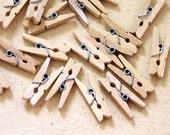 Hand Dyed Tiny Clothespins 12 pcs CHALK