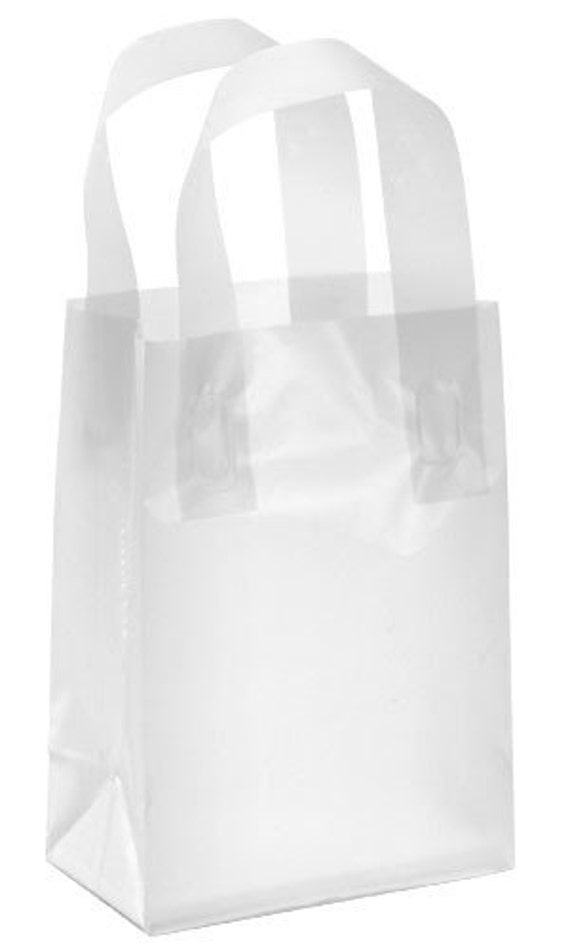20 Pack Frosted Soft Loop Handle Bags 5 X 6 In By
