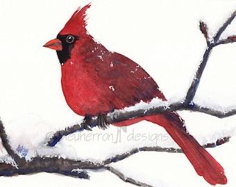 red cardinal- Mister Cardinal- watercolor art print