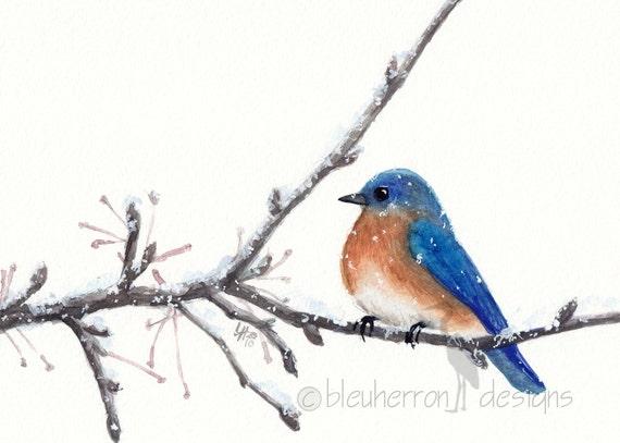 watercolor bird- Bluebird- art print