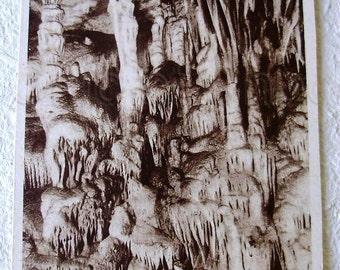 French Unused Vintage Postcard - Le Parasol, La Grotte de Presque, France.