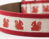 Romantic Squirrel Dog Collar