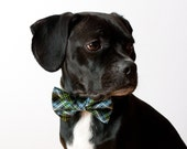 Navy Blue Tartan Dog Bow Tie Collar