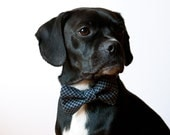 Navy Grid Bow Tie Dog Collar