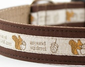 The Nut of the Oak Tree Squirrel Dog Collar
