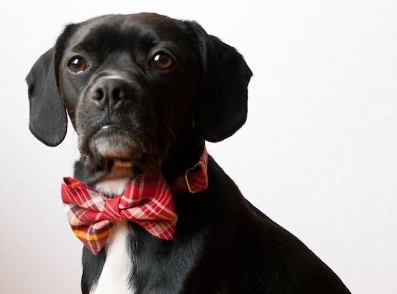 Red Tartan Dog Bow Tie Collar