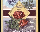 1910s Victorian Rose Witch Hazel Label Franfort NY Roses Early Ad Art