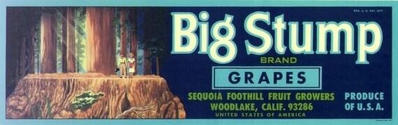 Big Giant Sequoia Vintage Lug Label Ad Art Tall Trees