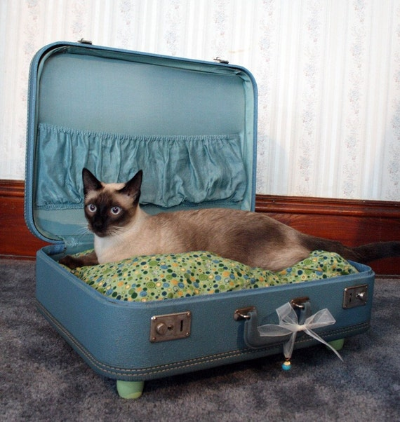 SnuggyLuggage Suitcase Pet Bed Vintage Upcycled Cat Dog Teal Green
