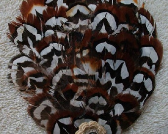 Brown, Black and White Pheasant Feather Fascinator - Choose headband, barrette, comb or clip