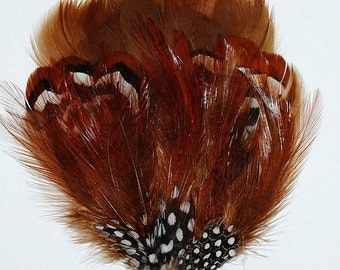 Chocolate Brown Goose, Hackle and Guinea Pad