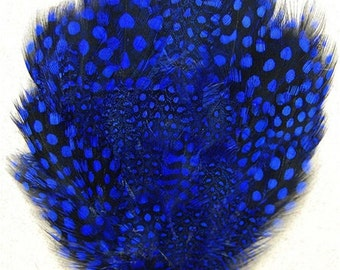 Royal Blue Dyed Guinea Feather Pad