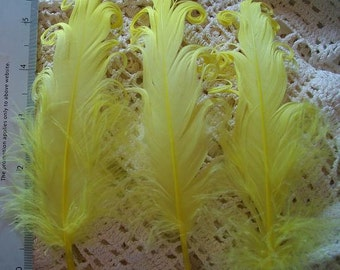 3 Loose Nagorie Feathers - Bright Yellow