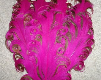 Hot Pink and Brown Nagorie Feather Pad
