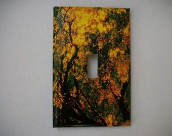 SWITCH PLATE COVER - Evening Sun In Fall