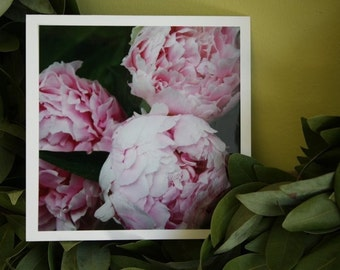so this is love - perfectly pink peonies - fine cards (and so very fresh)