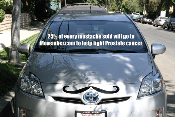 Series 1 - Mustache for your Car Truck or Van. (25% donation to prostate cancer)