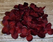 One Lot of 100 Hydrangea Blossoms in Burgundy