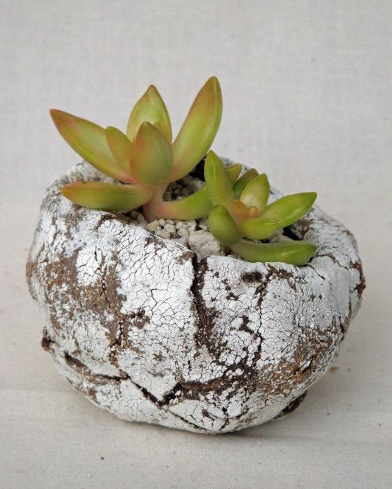 Small Handbuilt Stoneware Planter Pot  for Cactus, Succulent, Bonsai or Indoor Rock Garden