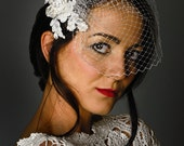 Dreaming of Lace birdcage veil
