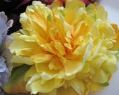 Sunny Yellow Peony