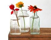 Trio of Mini Vintage Bottles