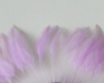 Lilac Feather Mount