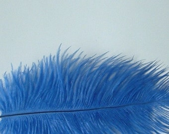 Blue Ostrich Feathers