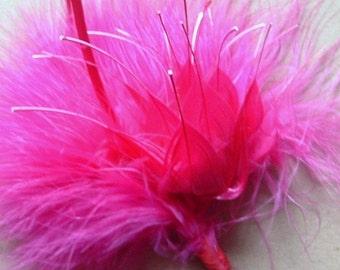 Hot Pink Feather Arrangement
