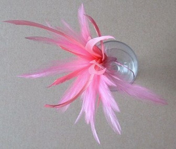 Hackle and Biot Arrangement - Coral Pink