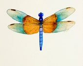 Dragonfly II - Original Watercolor Painting - signed - 8x10 inch