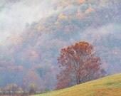 11 x 14 Photograph - Smoky Mountain Morning