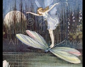 Moonlight Fairy riding a Dragonfly over Lily Pond : DIGITAL ART  jpg / jpeg download by email or url Unlimited personal uses CADA Archive
