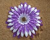 Purple Daisy with WHITE POLKA DOTS  hair clip