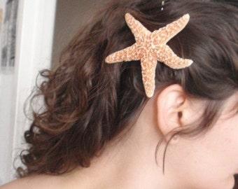 NATURAL SUGAR STARFISH hair pin star fish