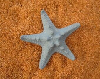 Sky blue  knobby starfish bobby pin HAIR clip