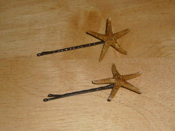 set of two bobby pins with starfish STAR FISH --- Brown Bay