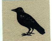 Crow Raven bird art print applique patch wearable art
