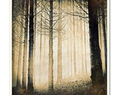 Spooky Forest - Grunged Photographic Print by Doug Armand on Etsy - DAIP0067