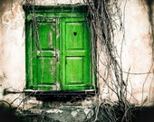 Fine Art Photograph, Window to the heart 20 x 20, green, Valentine's Day, love, FREE SHIPPING