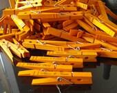 100 Tangerine Orange Wedding Clips place card holders custom