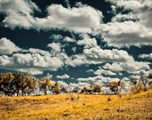 Photo of Rolling Golden Hills and Blue Sky Dotted with White Clouds. Fine Art Photo Entitled Forward - Fine Art Photo - 8 X 12