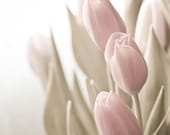 Photo of Soft Pink Tulips with Sage Green Leaves Entitled Whisper - Fine Art Photo - 8 X 8