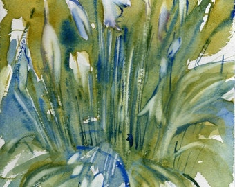 Fresh Pick No.79,limited edition of 50 fine art giclee prints from my original watercolor