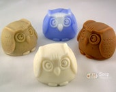 Owl Silicone Soap Mold ( Soap Republic )