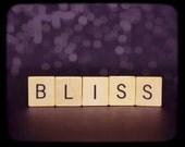 Bliss - 8x10 Fine Art Photograph
