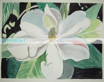 SALE Louisiana Magnolia III - 11 X 14 Signed Art Print